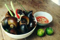 Ốc bươu hấp sả ớt – Món ăn dân dã cửa người dân xứ Huế